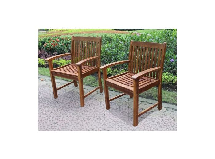 Highland Set of Two Acacia Hudson Arm Chair in Brown