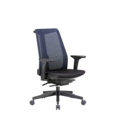 Contemporary Mesh Executive Chair in Black - B6990-BK