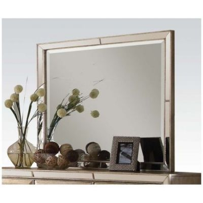 Voeville Mirror in Antique Gold - 21004