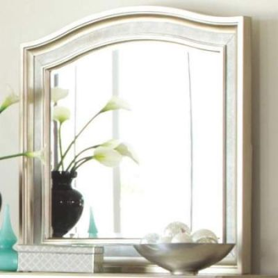 Mirror with Arched Top in Metallic Platinum - 204184