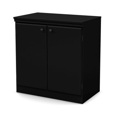 Morgan Small 2-Door Storage Cabinet Pure Black - 7270722