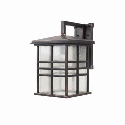 Chamise 1 Light Large Exterior Lighting in Bronze with Glass - 1463ORB-L