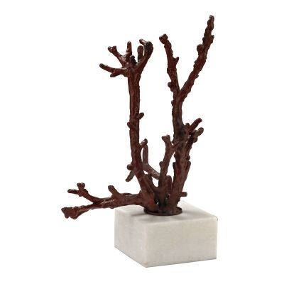 Staghorn Coral Sculpture - 148027