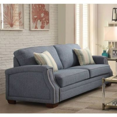 Betisa Aaron's Sofa with 2 Pillows in Light Blue - 52585